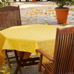 Autumn Entertaining Outside and On The Cheap