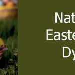 Easter Craft: Making Natural Egg Dyes | Easter Egg Decorating